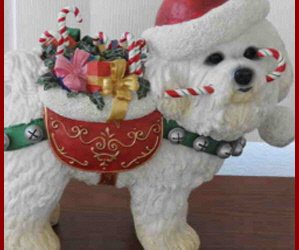 Danbury Mint Christmas Bichon!/ Storybook Bichon Sweater!/ Beautiful Angel Ornament! Shop The Small Paws Rescue Online Auction!