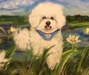 We Are Extending the Small Paws Spring Benefit Auction by One Week to Help the Rescued Bichons!