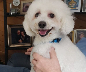 "Special Needs Home Needed for 8 Year Old ""Smiling"" Buddy. Two New Matching Donation Challenges!"