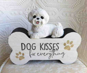 """The Auction Ends Tomorrow, Sunday Night at 10:00 P.M. E.S.T!/ """"Someone To Comfort"""" Danbury Mint Bichon Plate/ NEW Coach Wristlet/ Artist Manuela Poookie Quick Bichon Tote/ Hand sculpted Bichon Frise """"Dog Kisses for Everything"""""""